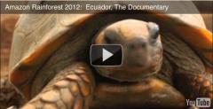 Screen shot 2012-01-04 at 11.26.20 AM