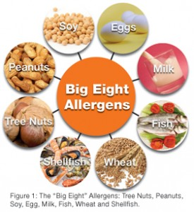 Big 8 Allergens for AllerTrain on lone allergy training for restaurants 275x300 With food allergies on the rise, more parents push for legislation to keep their kids safe in school