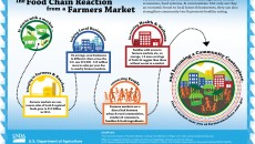 Farmers Market Relationships-Infographic