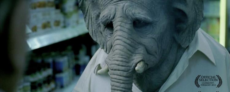 elefante-shortfilm-750x300