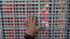 Child-Hand-Border-Fence