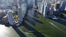 """The City Shadows"" showcases newly built skyscrapers which play a part in the city-wide progression of ""Miami manhattanization."""