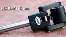 LIMBS Knee_Klempner