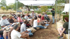 Photo: Green Spaces Alliance