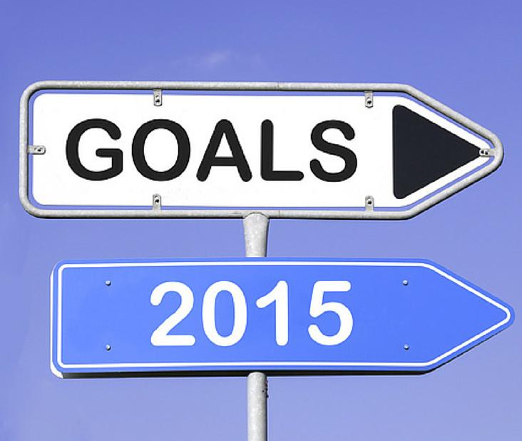 196_Goals_2015_Facebook
