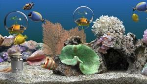Home aquariums featuring individualized Nemo's Gardens.