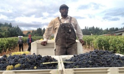 minority winemakers