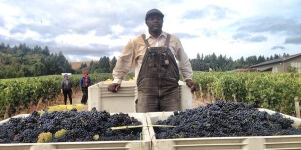 minority winemakers