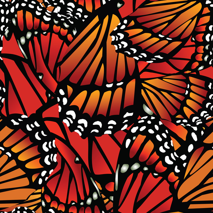 monarch_pattern