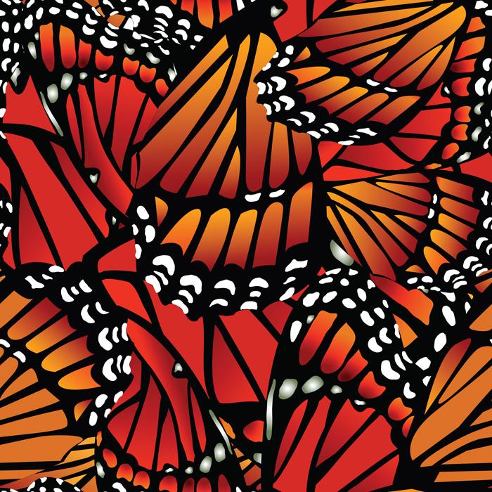 monarch_pattern